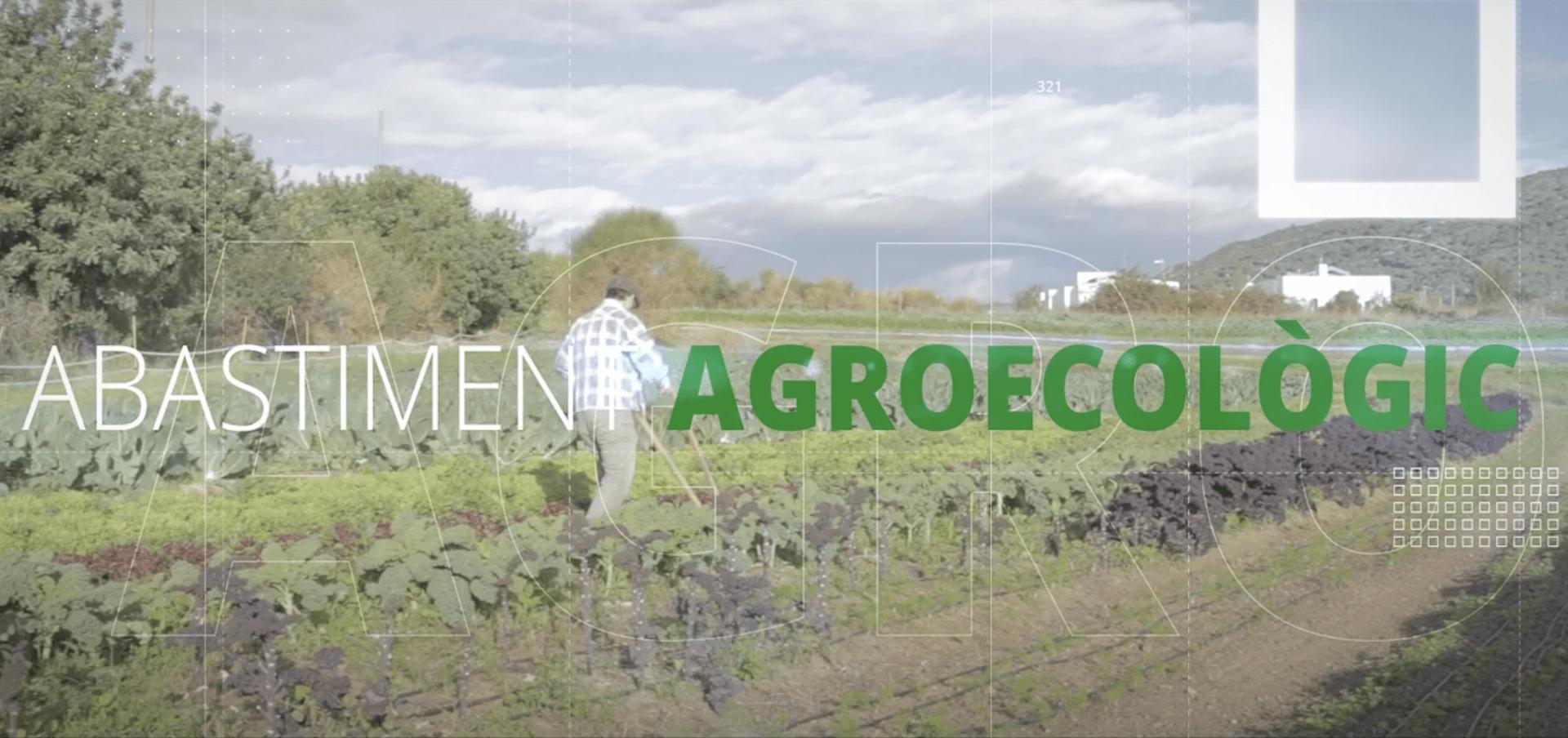 abastiment agroecològic